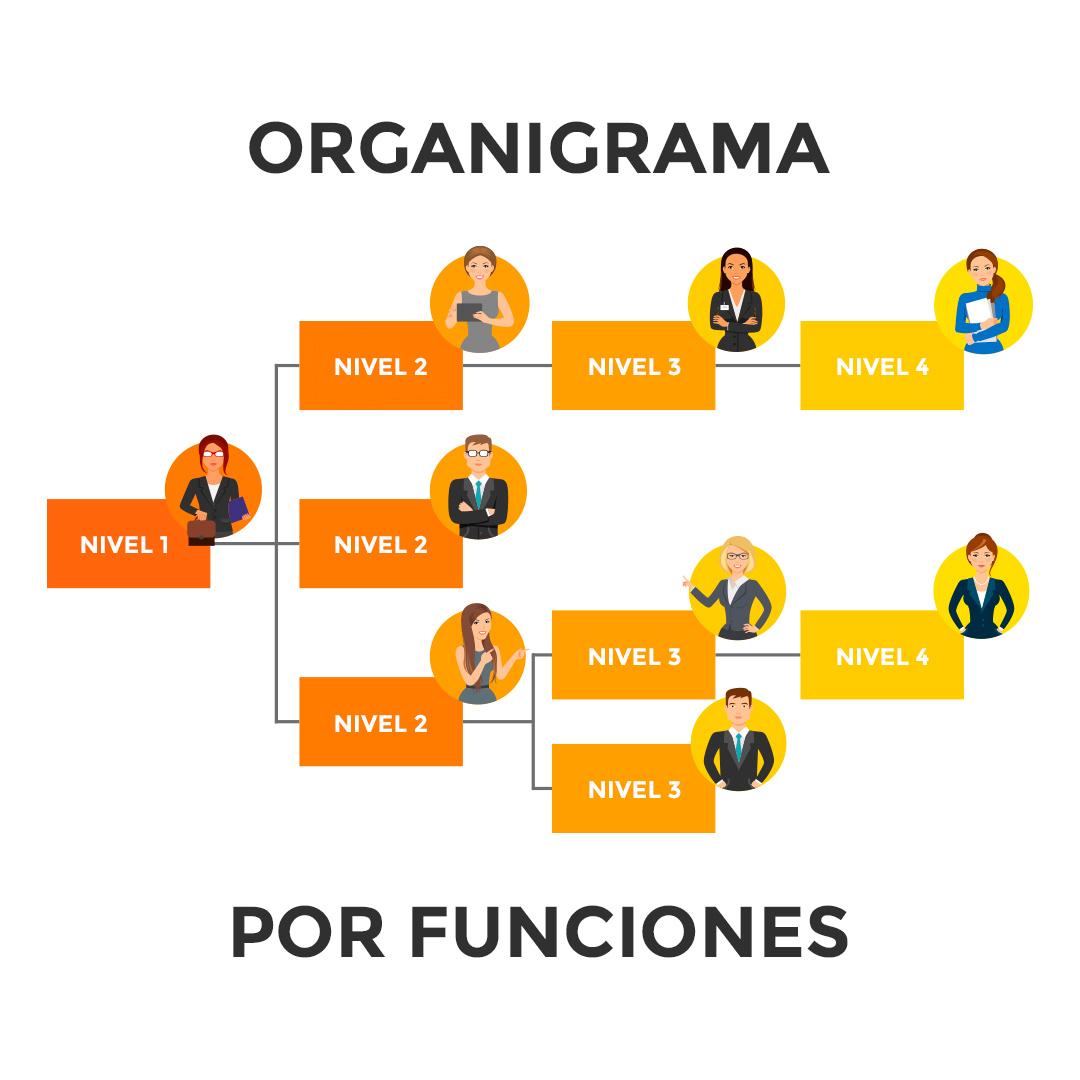 Organigrama por funciones